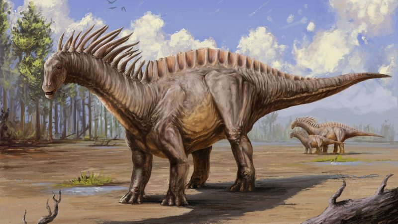 Berbagai Dinosaurus Aneh