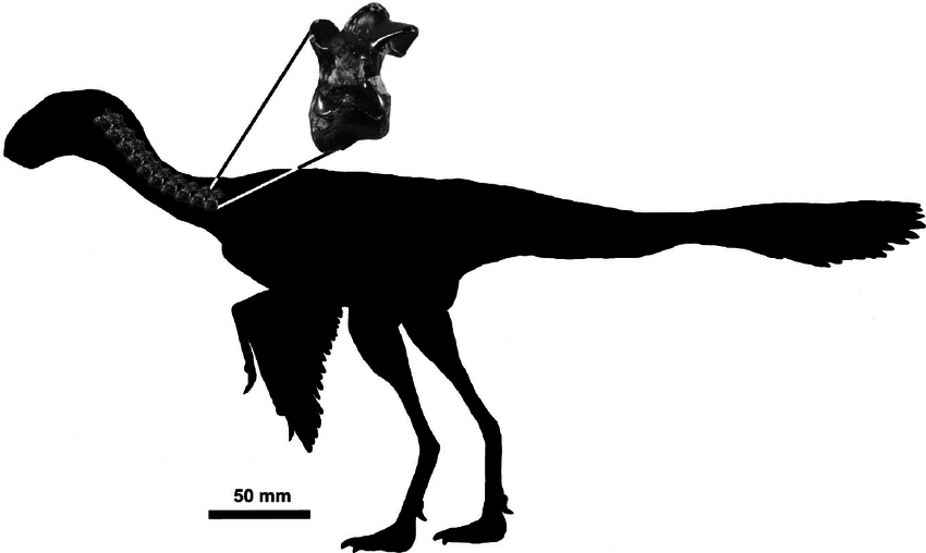 Dinosaurus Terkecil Yang Pernah Hidup