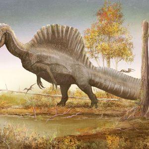 Fakta Menarik Mengenai Spinosaurus