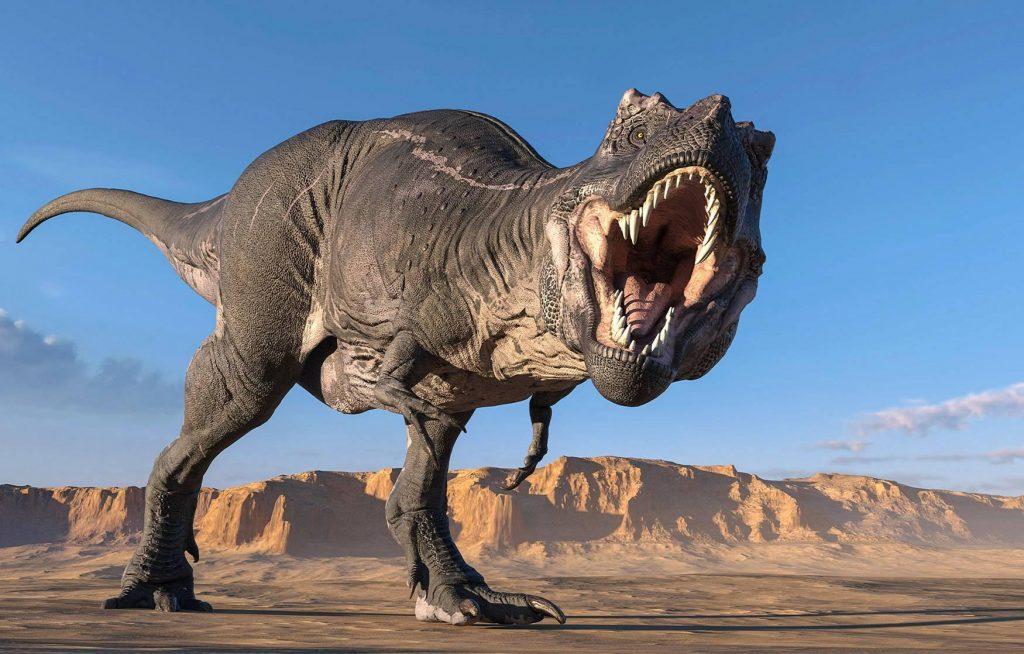Fakta Unik Tentang Tyrannosaurus Rex
